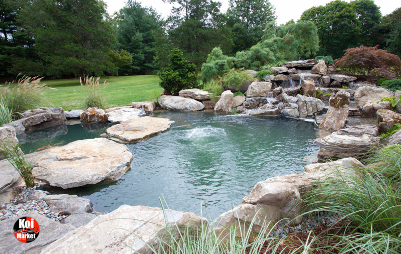 15 000 gallon pond build in glen head ny for Koi pond gallons