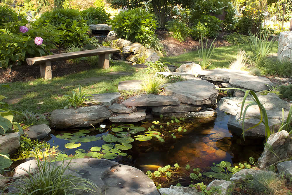 Pond types for Koi pool water gardens thornton